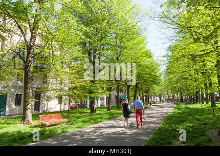 Spring in Venice. Fresh green trees in the Parco della Rimembranze along Viale 1V Novembre, Sant'Elena , Venice, Veneto, Italy, Couple walking - Stock Photo