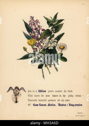 Willow, Crow flowers, Nettles, Daisies, and Long-purples (Hamlet). Handcoioured botanical illustration drawn and lithographed by Jane Elizabeth Giraud from The Flowers of Shakespeare, Day and Haghe, London, 1845. - Stock Photo