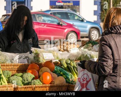 Woman buying vegetables at Phantassie outdoor market stall, Haddington Farmers Market, Place d'Aubigny, Court Street, East Lothian, UK on sunny Winter day - Stock Photo