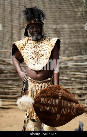 Single adult man in ceremonial dress of a Zulu chief at Shakaland traditional theme village - Stock Photo