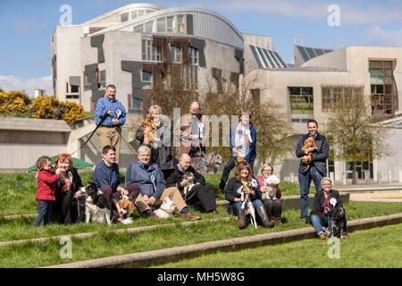 Edinburgh, UK. 30th April 2018. Politicians and their dogs demonstrate their political and canine to see which of Scotland's most 'pawfect' political pooches is named Holyrood Dog of the Year.  The event, held by the two biggest canine welfare organisations in the UK, the Kennel Club and Dogs Trust, raises awareness of the issues affecting man's best friend today and highlights the unique relationships between MSPs and their dogs.  Pictured: All the competing dogs and their owners Credit: Rich Dyson/Alamy Live News - Stock Photo