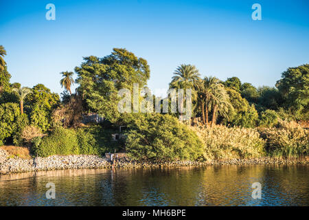 Coast and nature on the coast of the Nile rive in Egypt - Stock Photo