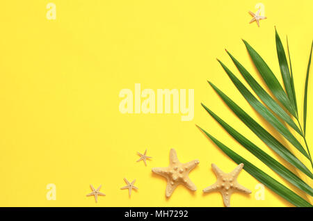 Tropical Background. Palm Trees Branches with starfish on yellow background. Travel. Copy space. - Stock Photo