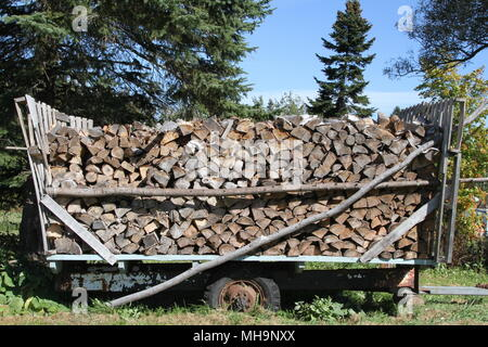 Wood logs piled up in an old wood wagon - Stock Photo