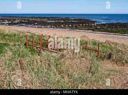 A small Wooden Bridge on the North East Scotland Coastal Path midway between Arbroath and East Haven. Angus, Scotland. - Stock Photo