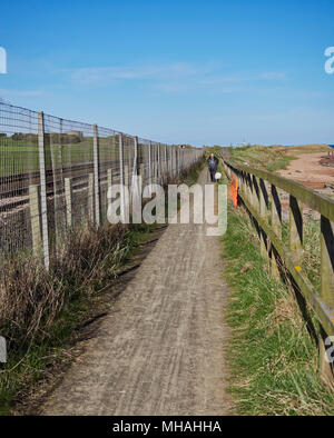 An Older Man slowly walking his Dog on a Footpath between Arbroath and East Haven, part of National Cycle Route 1. Angus, Scotland. - Stock Photo