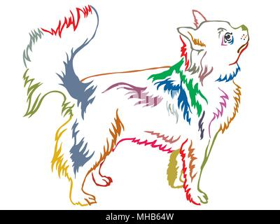 Colorful contour decorative portrait of standing in profile Longhaired Chihuahua, vector isolated illustration on white background - Stock Photo