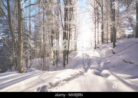 the winter road. Dramatic scene. Carpathian Ukraine - Stock Photo