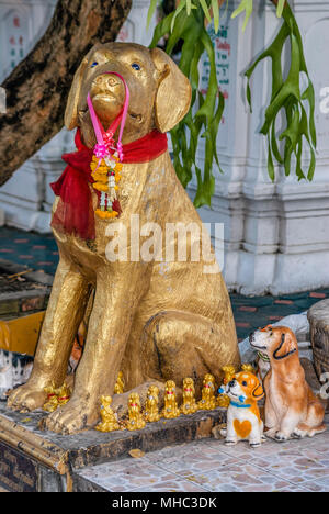 Dog sculptures at Wat ketkaram Buddhist Temple in Chiang Mai, North Thailand. Wat Ketkaram is an important temple for all people who fall into the dog - Stock Photo