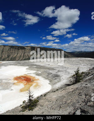 Mammoth Hot Springs Lower Terrace in Yellowstone National Park in Wyoming United States - Stock Photo