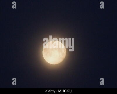 Isle of Sheppey, Kent, UK. 1st May, 2018. UK Weather: the full moon setting in the pre-dawn sky. Credit: James Bell/Alamy Live News - Stock Photo