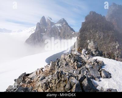 View of Orne Harbour glacier in mist from Spigot Peak, Antarctic Peninsula, Antarctica - Stock Photo
