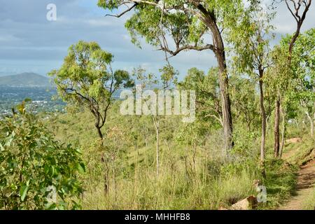Views of townsville from the Mount Stuart hiking trails, Townsville, Queensland, Australia - Stock Photo
