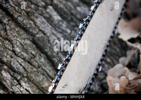 Close up of chainsaw on tree background. Selective Focus. - Stock Photo