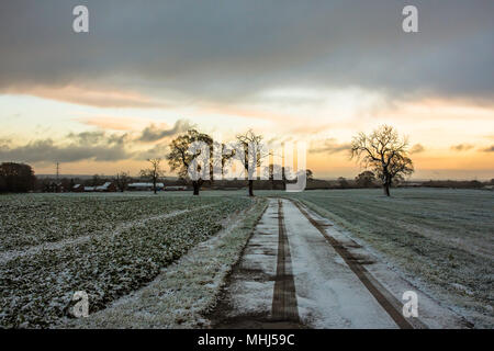 Sunrise over Staffordshire fields in winter.Lichfield ,Uk.Trees, fields covered with frost and dramatic ,dark sky with heavy clouds during sunrise. - Stock Photo