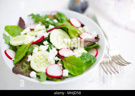 Mixed salad with baby leaves of red lettuce, tatsoi, arugula, red chard, radish, cucumber and feta cheese with olive oil and balsamic vinegar dressing - Stock Photo
