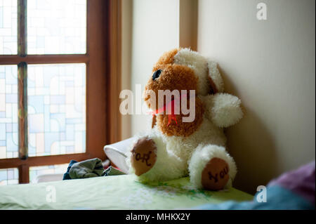Stuffy animal of dog is on the bed. This doll is a present from your lovable person. - Stock Photo