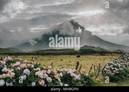 pico mountain on azores islands - Stock Photo