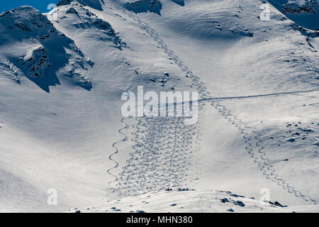 backcountry skiing trails snow detail tracks - Stock Photo