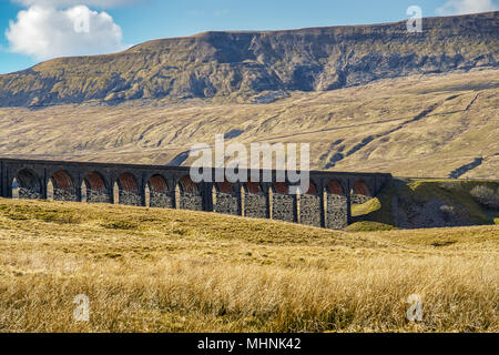 An oblique view of the Ribblehead viaduct.