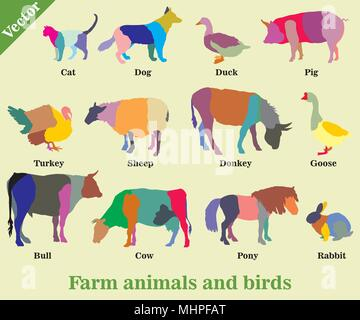 Set of vector colorful mosaic farm animals and birds ( Dog, Cat, Cow, Turkey, Donkey, Pig, Rabbit, Goose,  Sheep, Duck, Bull) silhouettes isolated on  - Stock Photo