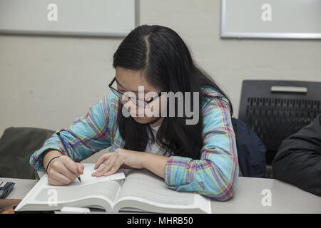 College bound high school students participate in a College Now program to prepare for SAT tests and filling out college applications, After school pr - Stock Photo