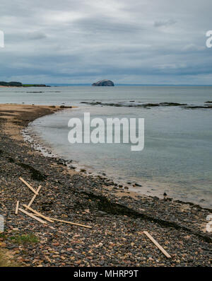 Ravensheugh Sands, East Lothian, Scotland, United Kingdom, May 2nd 2018. No-one on the beach looking across the Firth of Forth towards the Bass Rock, home to the world's largest Northern gannet colony. Planks of timber still lie washed up after spilling from cargo vessel Frisian Lady which lost the timber bundles during severe weather on 2nd March during the Beast from the East weather event - Stock Photo