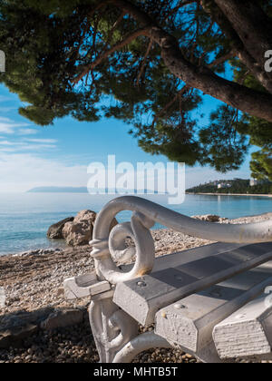 White wooden bench under pine tree near calm sea in Tucepi, Croatia - Stock Photo