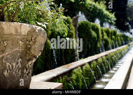 View along the avenue of the hundred fountains or Le Cento Fontane. Villa d Este. Tivoli. Italy. The wooded walkway is flanked on one side by over one - Stock Photo