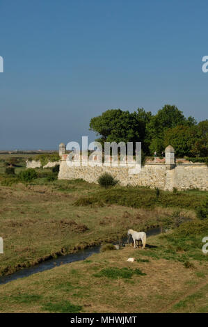 Hiers-Brouage, Charente-Maritime department in southwestern France - Stock Photo