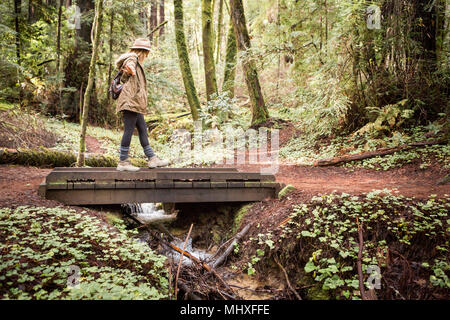Young woman in forest balancing on footbridge - Stock Photo