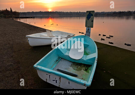 WA15307-00...WASHINGTON - Row boats on the beach and ducks swimming in the water at sunset at Seattle's Green Lake city park. - Stock Photo