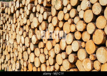 timber harvesting in the bavarian alpes,Germany - Stock Photo
