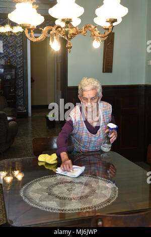 senior woman dusting the house - Stock Photo