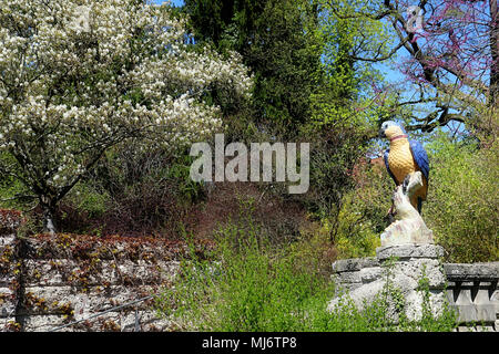 MUNICH, GERMANY -   APRIL 20, 2018  - Spring corner at Botanical garden in Munich. The botanical Garden was created in 1914 and cultivates about 14.00 - Stock Photo