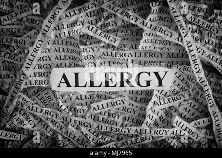 Allergy. Torn pieces of paper with the words Allergy. Concept Image. Black and White. Closeup. - Stock Photo