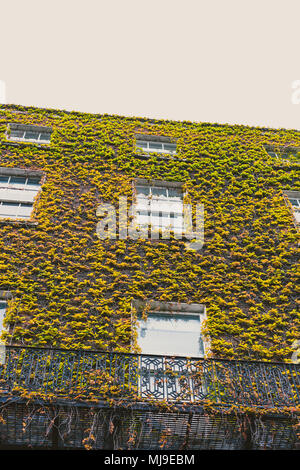 DUBLIN, IRELAND - May 1st, 2018: architectural details in Dawson Street in Dublin city centre - Stock Photo