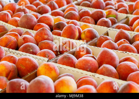 Fresh Peaches at a Farmers Market. - Stock Photo