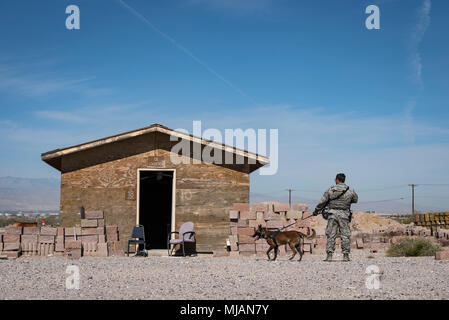 Staff Sgt. Ryne Wilson, 99th Security Forces Squadron military working dog handler, and his MWD, Seneca, search for a variety of simulated improvised explosive devices at Nellis Air Force Base, Nev., April 26, 2018. The exercise trains the handlers and their dogs to always be aware of their environment. (U.S. Air Force photo by Airman 1st Class Andrew D. Sarver) - Stock Photo