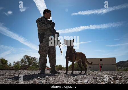 Staff Sgt. Ryne Wilson, 99th Security Forces Squadron military working dog handler, and his MWD, Seneca, prepare to search the next area during a training exercise at Nellis Air Force Base, Nev., April 26, 2018. Wilson and Seneca have been working together for more than eight months. (U.S. Air Force photo by Airman 1st Class Andrew D. Sarver) - Stock Photo