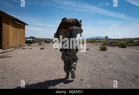 Staff Sgt. Ryne Wilson, 99th Security Forces Squadron military working dog handler carries his MWD, Seneca, after completing a training exercise at Nellis Air Force Base, Nev., April 26, 2018.  Wilson and Seneca have been partners for more than eight months. (U.S. Air Force photo by Airman 1st Class Andrew D. Sarver) - Stock Photo