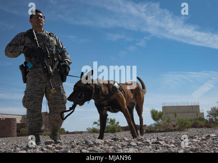 Staff Sgt. Ryne Wilson, 99th Security Forces Squadron military working dog handler, and his MWD, Seneca, prepare to clear a building during an explosives detection exercise at Nellis Air Force Base, Nev., April 26, 2018. Wilson and Seneca have been working together for more than eight months. (U.S. Air Force photo by Airman 1st Class Andrew D. Sarver) - Stock Photo