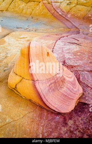 Sandstone rock with purple and gold colors on sandstone with similar colored stripes South Coyote Buttes Vermilion Cliffs National Monument Arizona - Stock Photo