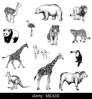 Set of hand drawn sketch style animals and birds isolated on white background. Vector illustration. - Stock Photo