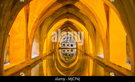 Europe, Spain, Andalusia, Seville, Real Alcazar, Gothic palace, vault, baths of Maria de Padilla, - Stock Photo