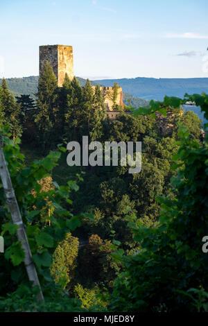 Gutenfels Castle, Kaub, Rhineland-Palatinate, Germany, Europe - Stock Photo
