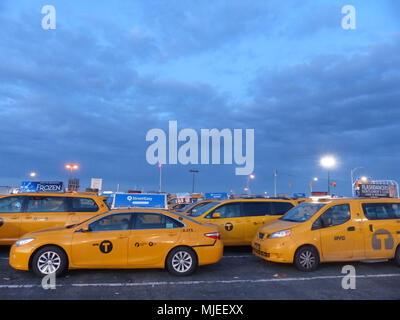 Yellowcabs licensed by NYC Taxi & Limousine Commission, wait at JFK Central taxi Hold, for their turn to pick up airline passengers - Stock Photo