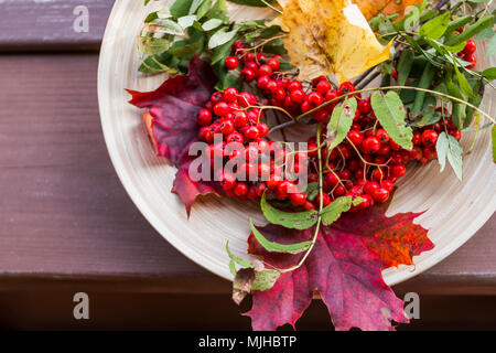 Autumn background with seasonal fruits, berries, vegetables and leaves - Stock Photo