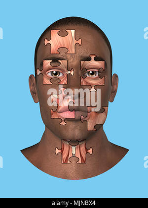 Anatomy front view of major face muscles of a man. - Stock Photo