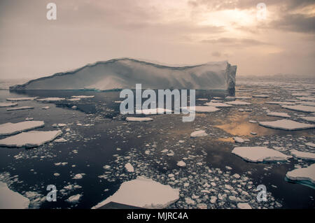 Magnificent iceberg floats on placid, inky-blue sea with broken pieces of sea-ice.  Low sun casts pale orange light through a small gap in clouds - Stock Photo